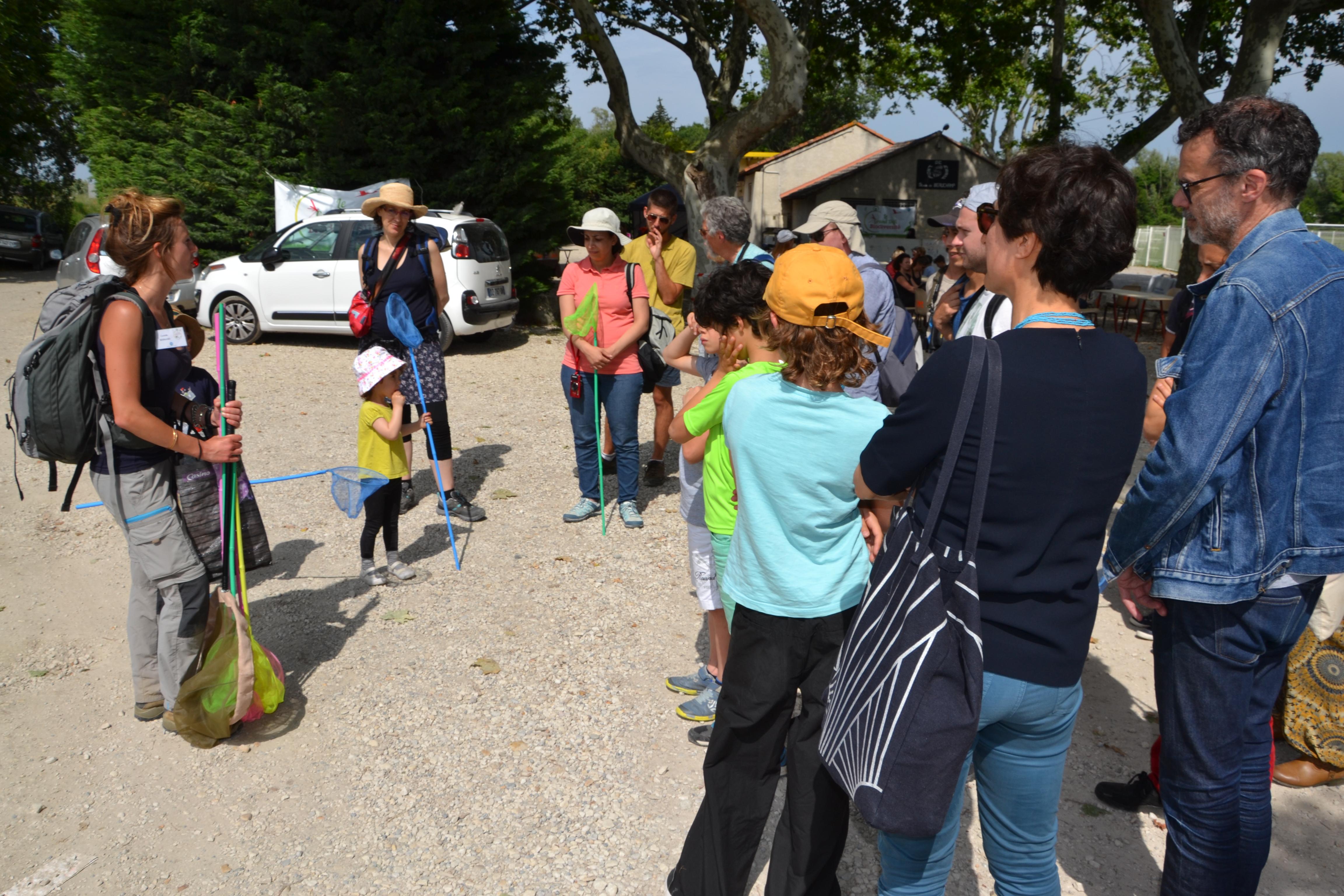 marais de Beauchamp 26 mai 2018 (113)
