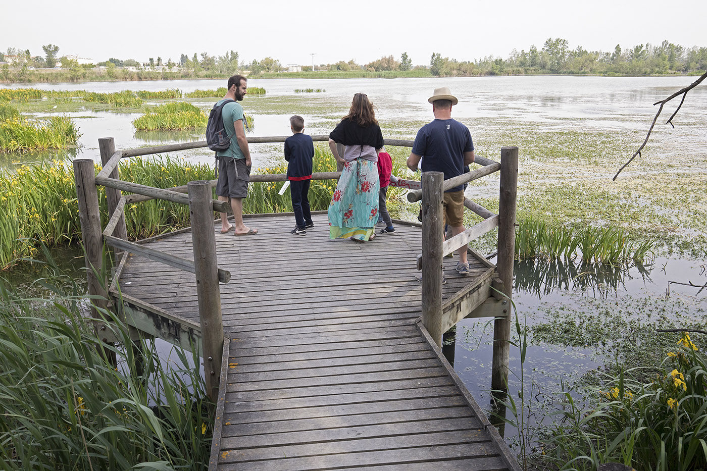 FDLN_Pays Arles biodiversite 13_MG_7606