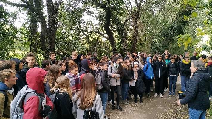 lycée_2019_2020
