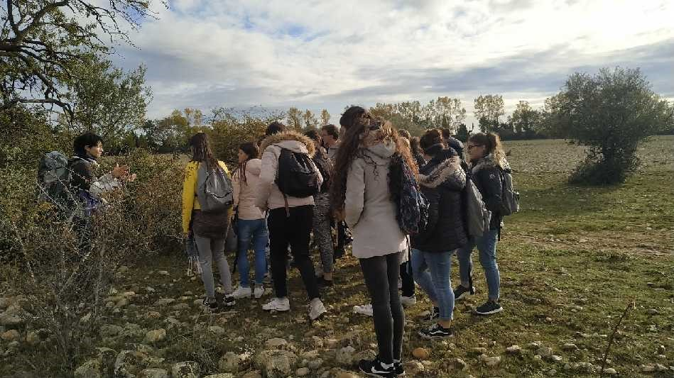 lycée_biodiversité_crau