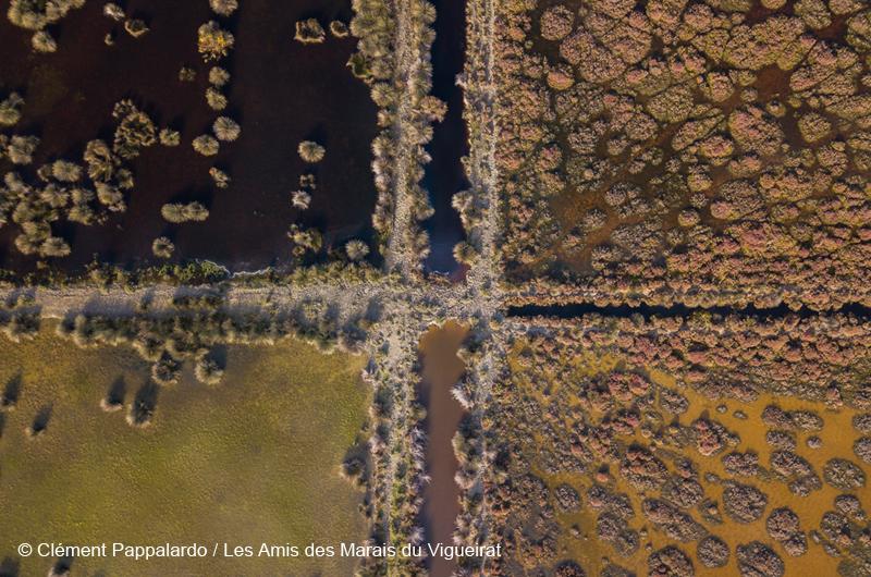 camargue-vue-drone-clement-pappalardo-MDV-800x530-1